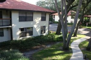 Clearwater Condo For Rent