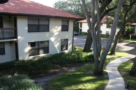 Clearwater Condo For Rent | Available Now